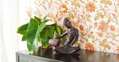 Tapetsere dit eget hjem med noget god kvalitets men billig tapet